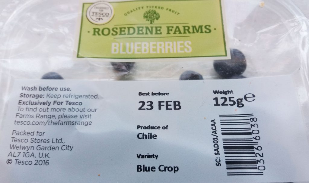 blueberries from chili