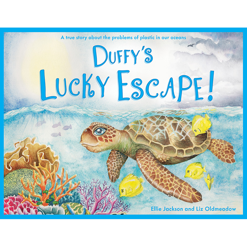 Duffy the Sea turtle