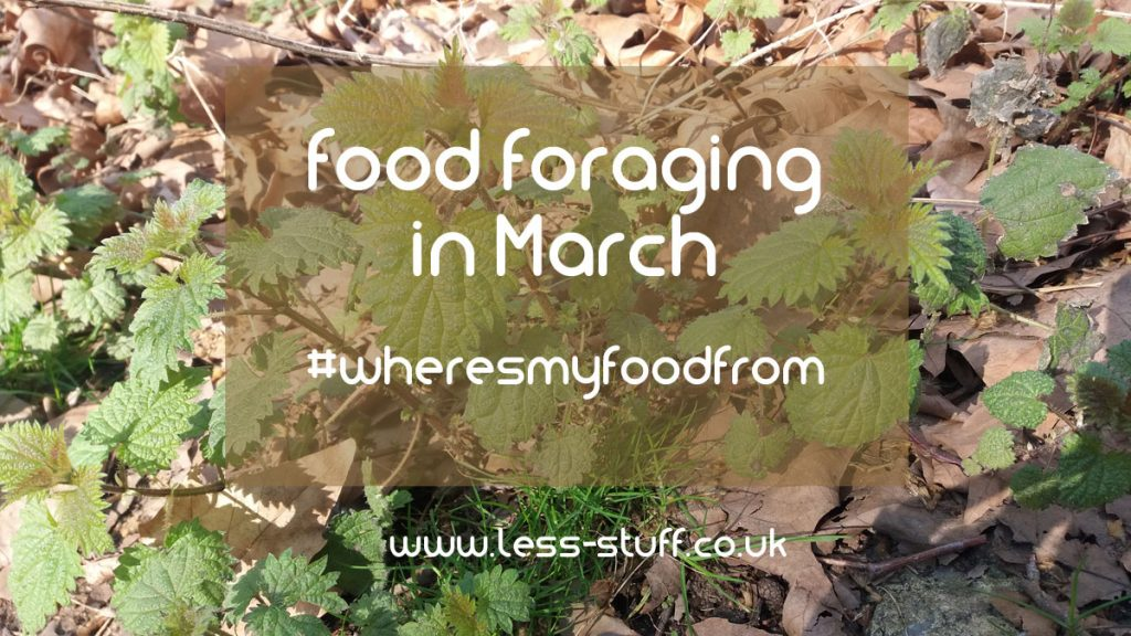 food foraging in march